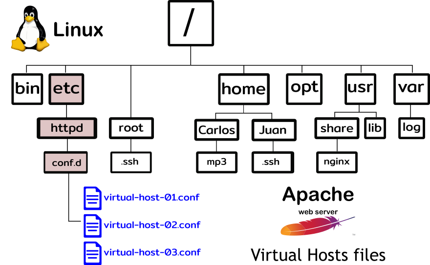 linux directory tree apache virtual host file