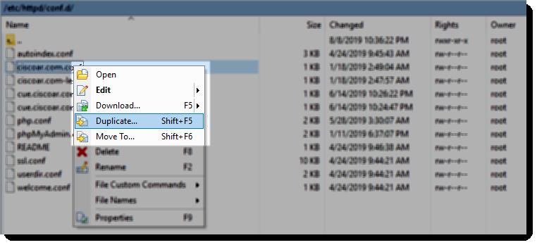 winscp duplicate file